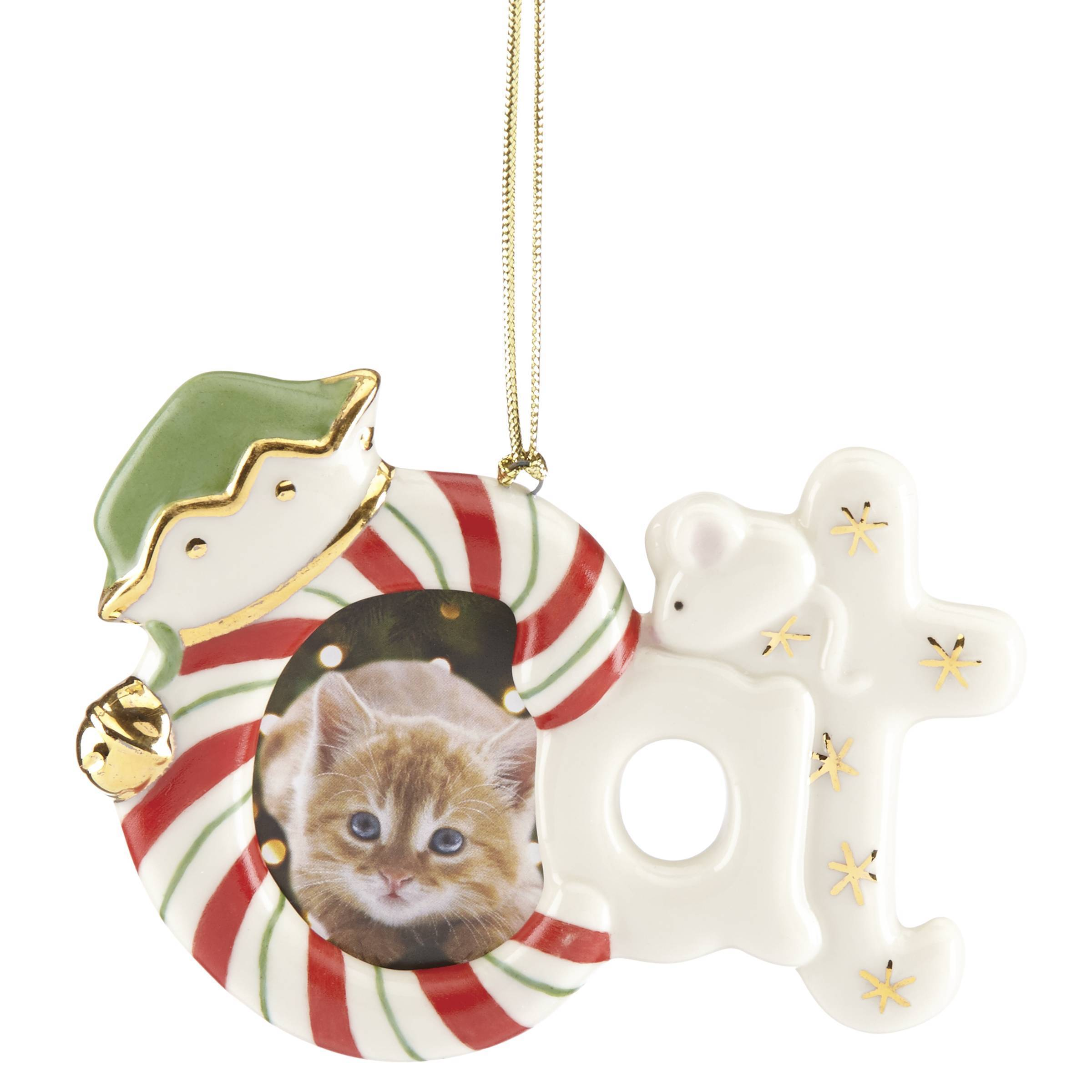 Furry Christmas Cat Frame Ornament