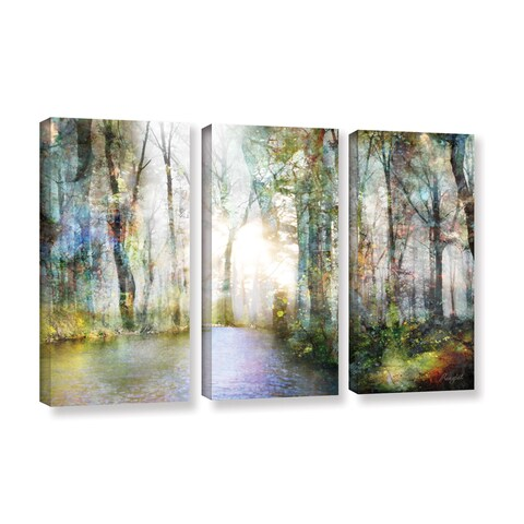 Roozbeh Bahramali's 'Hope' 3-piece Gallery Wrapped Canvas Set
