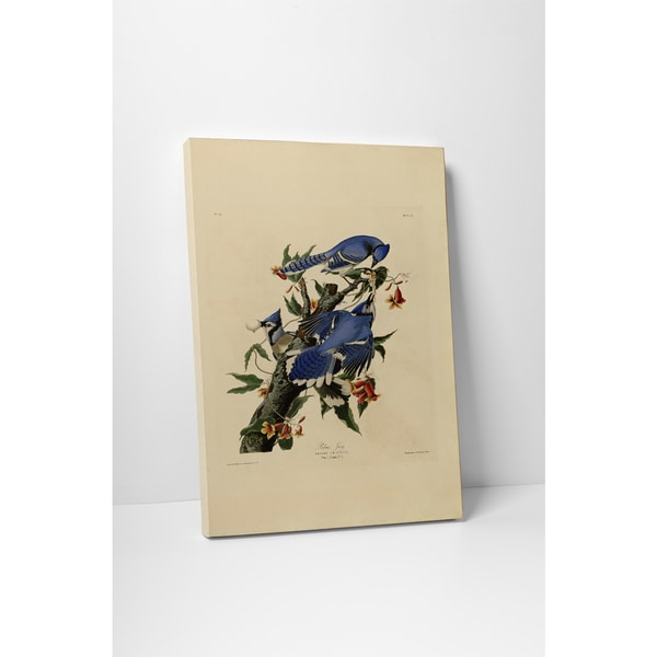 Classic Masters John Audubon 'Blue Jay' Gallery-wrapped Canvas Wall Art