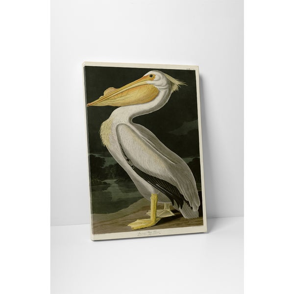 Shop Classic Masters John Audubon \'American White Pelican\' Gallery ...