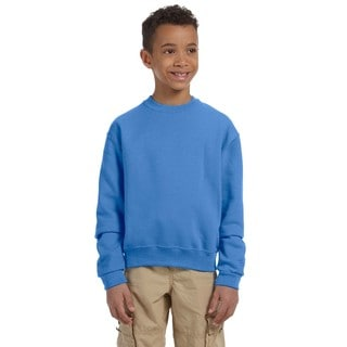 Nublend Boy's Columbia Blue Crew-neck Sweatshirt