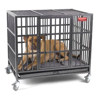 ProSelect Empire Silver Stainless Steel Dog Kennel
