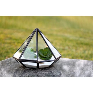 Diamond Shape Geometric 4.75-inches x 6-inches Terrarium