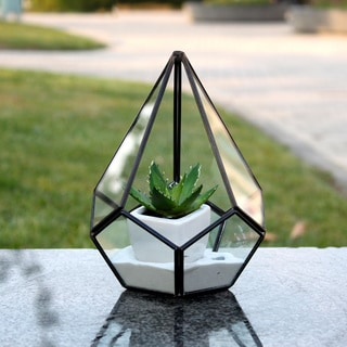 Undecahedron Tear Drop Sitting Geometric Terrarium