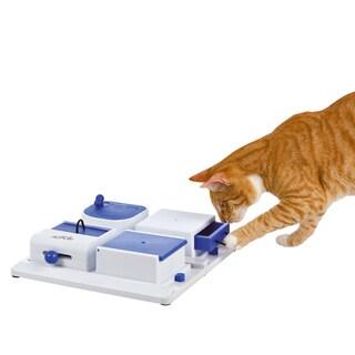 Cat Activity Poker Box