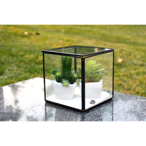 Black Copper and Glass 5-inch x 5-inch Hexahedron Cube Geometric Terrarium