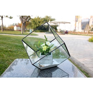 Heptahedron Shape Tilted 8-inch Cube Geometric Terrarium - 11.5 inches x 12 inches