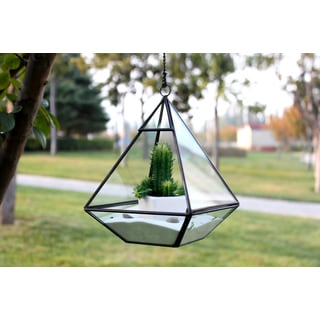 Black Copper/Glass 8-inch x 6-inch Nonahedron-shaped Raised Pyramid Geometric Terrarium