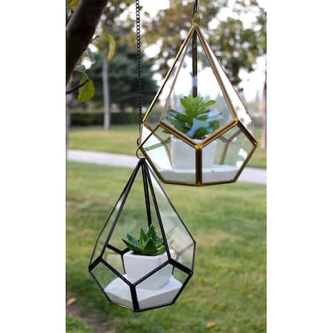 Undecahedron Geometric Tear Drop Glass and Copper 5.5-inch x 8-inch Terrarium