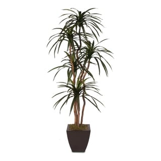 Faux 6-feet Yucca Tree in Metal Container