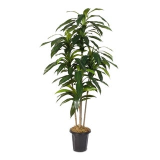 Faux Dracaena 5-feet Tree in Plastic Pot