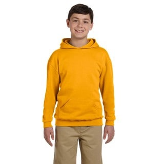 Boys Nublend Gold Hooded Pullover Sweatshirt