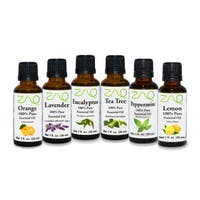 ZAQ Aromatherapy Top 6 100-percent Pure Therapeutic 1-ounce Essential Oil Gift Set (Pack of 6)
