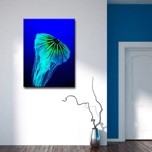 Ready2HangArt 'Iridescent Jelly II' by Christopher Doherty Canvas Art