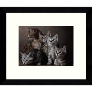 Framed Art Print 'European Shorthair Kittens' by Yann Arthus-Bertrand 11 x 9-inch