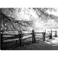 P.T.Turk 'Walk In The Woods' Landscape Photography 24 x 36 Gallery Wrapped Wall Art