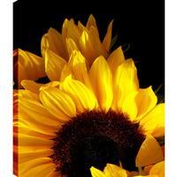 P.T.Turk 'Sunflower II' Gallery-wrapped Wall Art