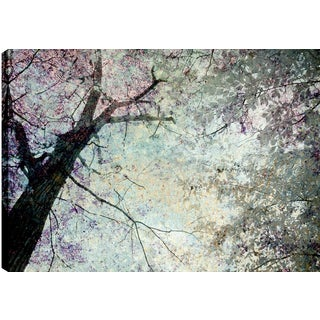 Hobbitholeco. P.T.Turk 'Like the Sparkles' 18-inch x 24-inch Ready-to-hang Gallery-wrapped Landscape Photography Wall Art