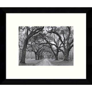 Framed Art Print 'Oak Arches' by Jim Morris 11 x 9-inch