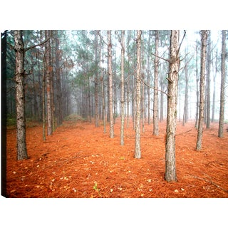 Hobbitholeco P.T. Turk 'Tree Landscape' 24-inch x 36-inch Gallery-wrapped Ready to Hang Landscape Photography Wall Art Decor