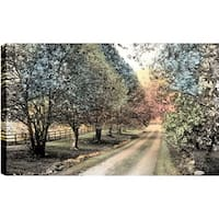 ArtMaison Canada P.T. Turk 'Pathway in the Park' Landscape Photography 18-inch x 24-inch Ready-to-hang Gallery-wrapped Wall Art