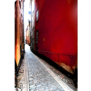 Hobbitholeco P.T. Turk 'Narrow Path' Landscape Photography 24-inch x 36-inch Ready-to-hang Gallery-wrapped Wall Art Decor