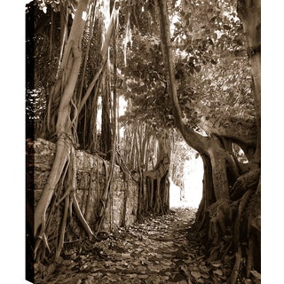 Hobbitholeco. P.T.Turk 'Long Branches' 18-inch x 24-inch Ready-to-hang Gallery-wrapped Landscape Photography Wall Art