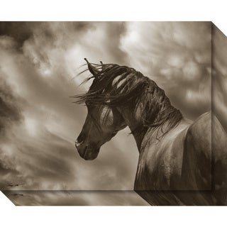 Canvas Art Gallery Wrap 'The Renegade Horse' by Barry Hart 20 x 16-inch