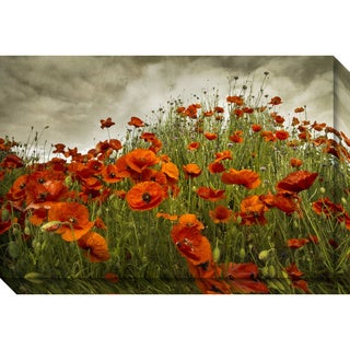 Canvas Art Gallery Wrap 'Bobbi's Poppies' by David Lorenz Winston 30 x 20-inch