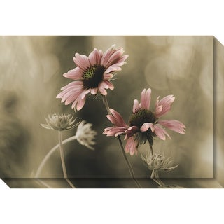 Canvas Art Gallery Wrap 'In Perfect Harmony (Floral)' by David Lorenz Winston 30 x 20-inch