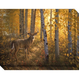 Canvas Art Gallery Wrap 'Whitetail in Aspens' by Greg Alexander 24 x 18-inch
