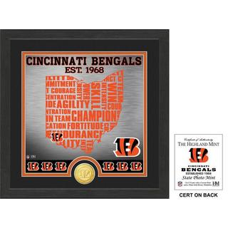 "Cincinnati Bengals ""State"" Bronze Coin Photo Mint"