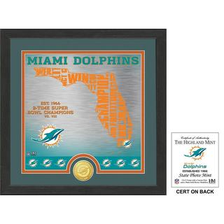 """Miami Dolphins """"State"""" Bronze Coin Photo Mint"""