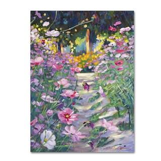 David Lloyd Glover 'Garden Path of Cosmos' Canvas Art