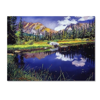 David Lloyd Glover 'Reflections in Solitude' Canvas Art