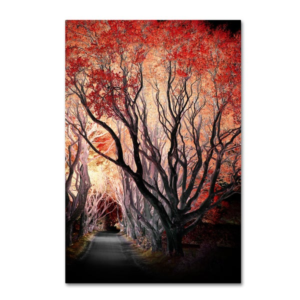 Philippe Sainte-Laudy 'Powerful One' Canvas Art