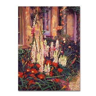 David Lloyd Glover 'English Cottage Garden' Canvas Art