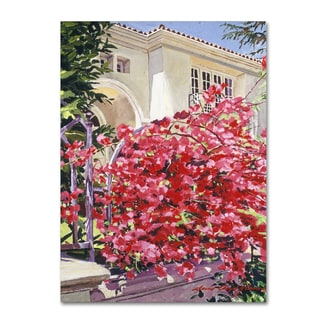 David Lloyd Glover 'Pink Bougainvillea Mansion' Canvas Art