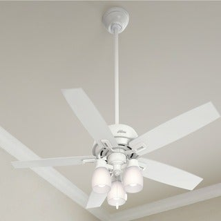 "Hunter 52"" Donegan Ceiling Fan with LED Light Kit and Pull Chain - White"