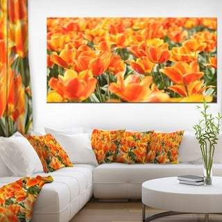 Fresh Tulip Flowers on Sunny Day - Floral Canvas Art Print