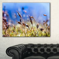 Abstract Summer Spring Moss Flowers - Modern Landscape Wall Art Canvas - Multi-color
