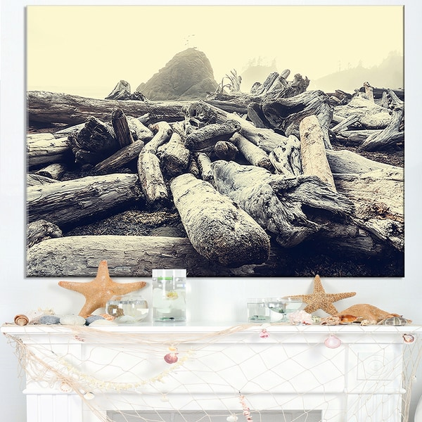 Olympic National Park Landscape - Modern Landscape Wall Art Canvas - Multi-color