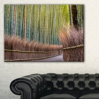 Pathway Inside Bamboo Forest - Forest Canvas Wall Art Print