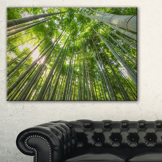 Peaks of Bamboo in Kyoto Forest - Oversized Forest Canvas Artwork