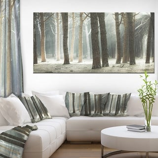 Maritime Pine Tree Forest with Rays - Oversized Forest Canvas Art