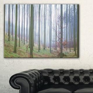 Autumn Tree Trunks Panorama - Oversized Forest Canvas Artwork