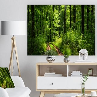Fascinating Greenery in Wild Forest - Large Forest Wall Art Canvas