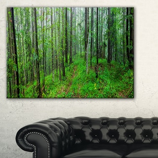 Green Wild Forest with Dense Trees - Large Forest Wall Art Canvas