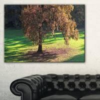 Lonely Beautiful Autumn Tree - Landscape Wall Art Canvas Print - Multi-color