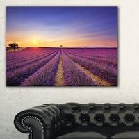 Lavender Field in Provence France - Oversized Landscape Wall Art Print - Blue